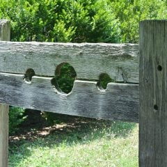 wooden pillory